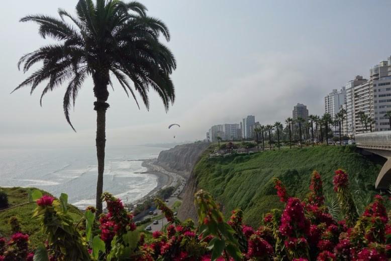 senicanka Nika v Lime