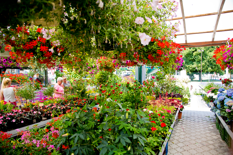 Senica-Plus-Zahradne-centrum-Bena